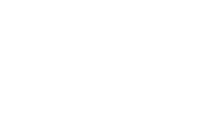 The Cat Nurse